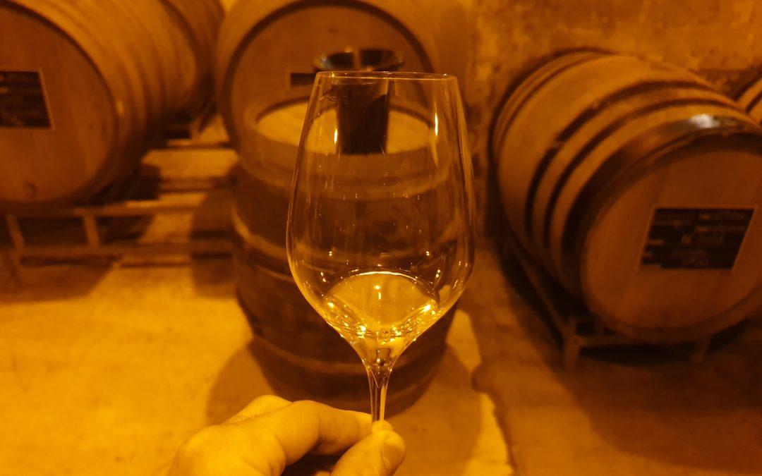Différences entre Vignerons et Maisons de Champagne